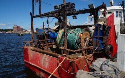 """Nicolás González Casares defiende el acuerdo pesquero con Guinea-Bisáu como """"beneficioso"""" para la flota gallega"""