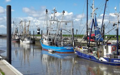 La Comisión de Pesca del PE cuestiona la reserva de ajuste del 'brexit' y anuncia enmiendas para garantizar apoyo al sector